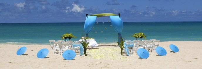 so start planing your dream destination wedding cabo san lucas and let our team here at cabobeachweddingscom help you every step of the way